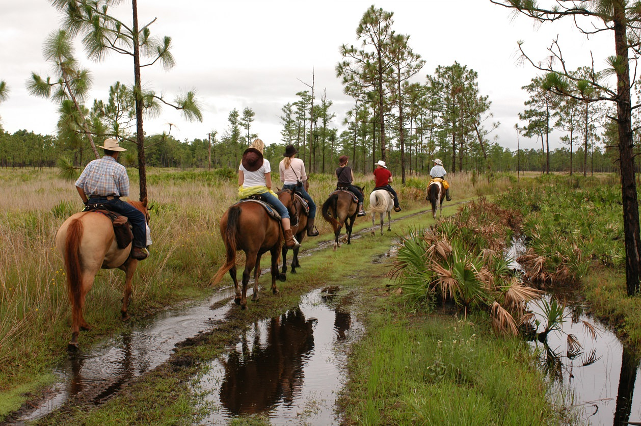 Horse_Back_Riding_orlando_attractions_american_vacation_living - disney