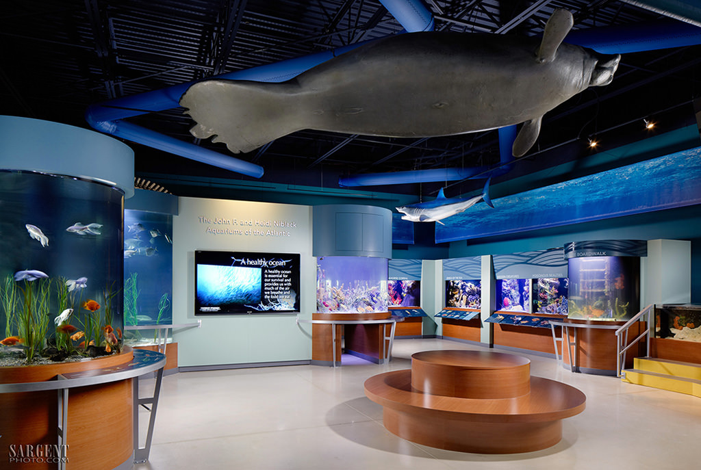 South-Florida-Science-Center-and-Aquarium_PalmBeach - palm beach