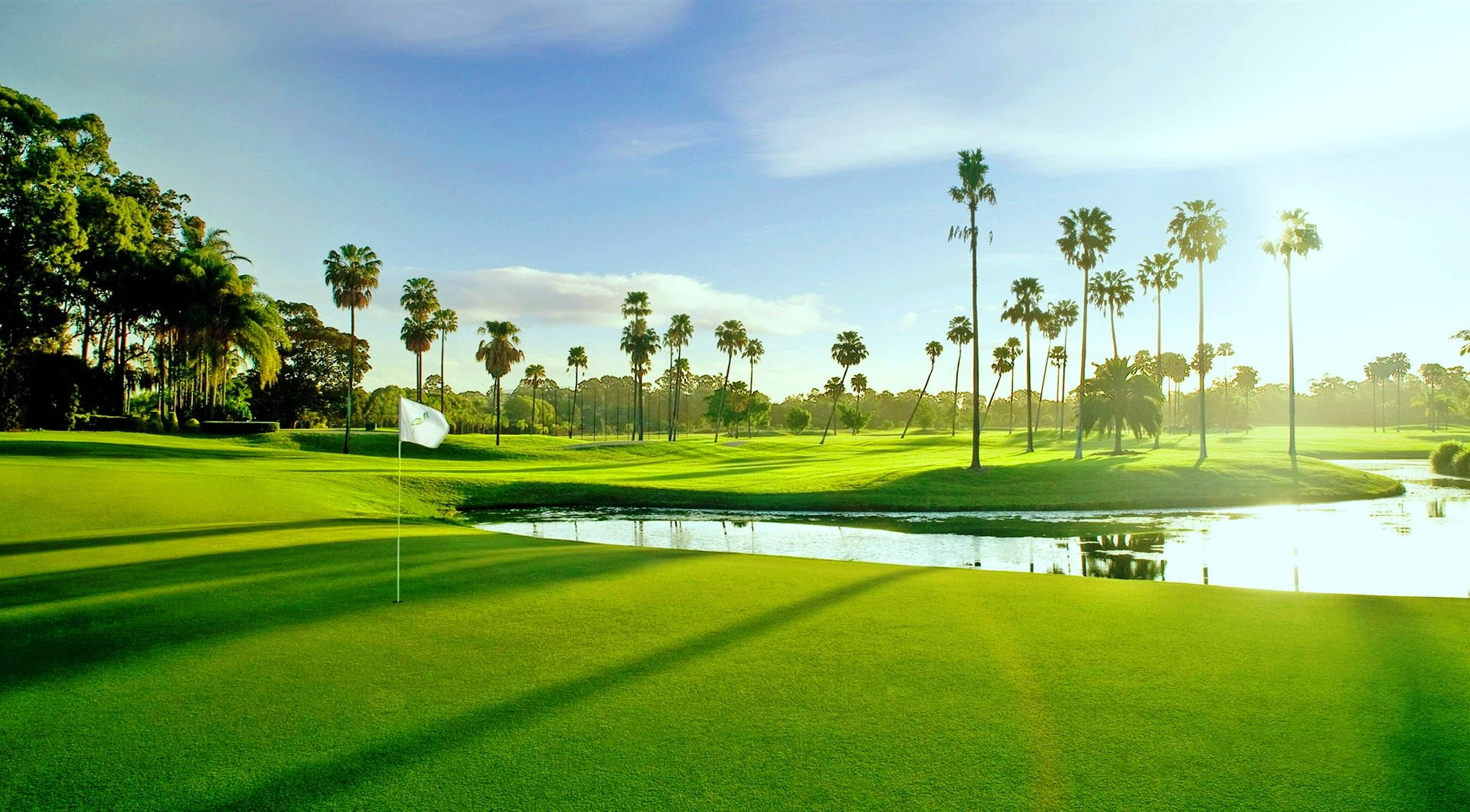 palmcovegolfclub - palm beach